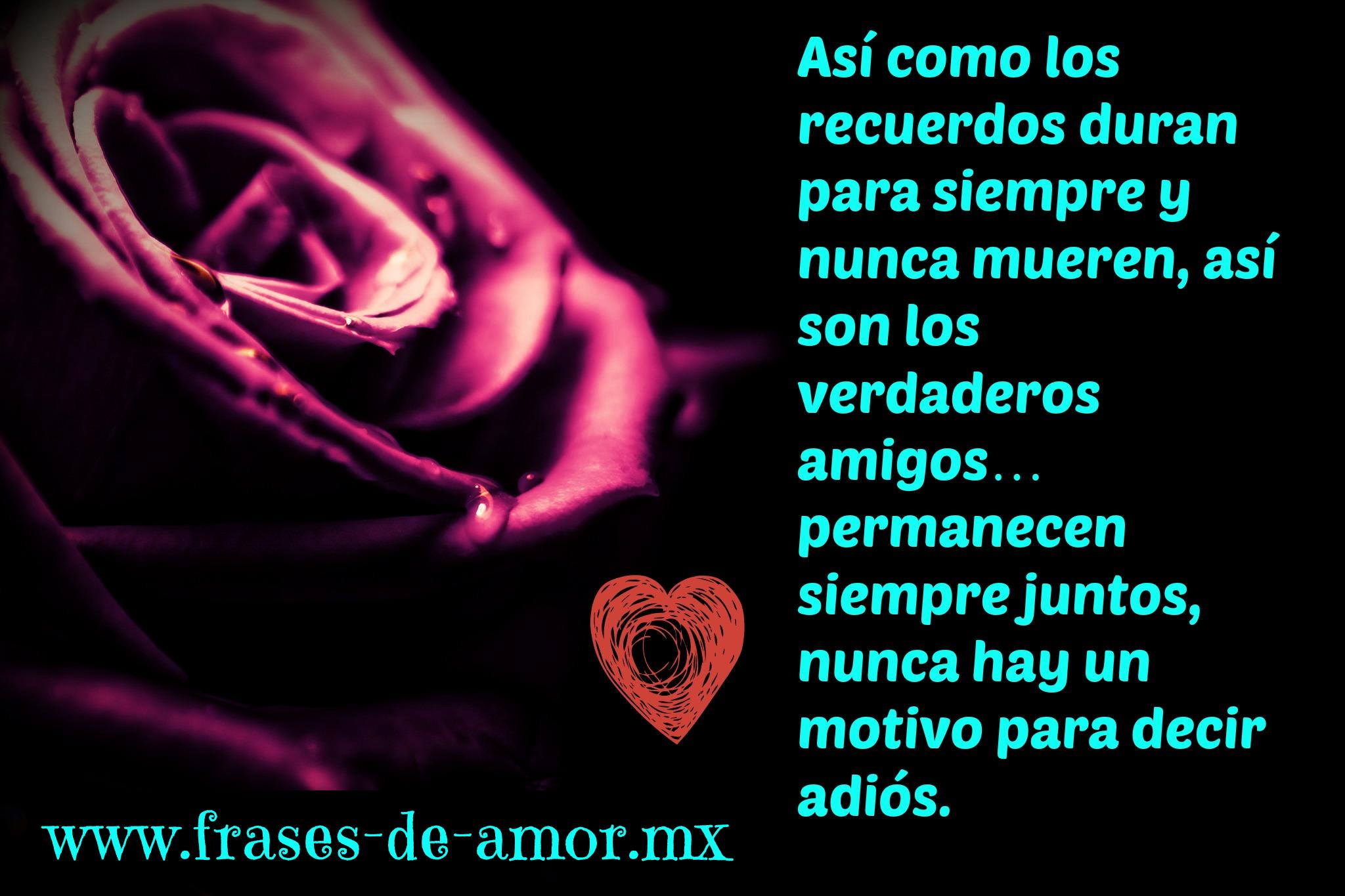 decir adios Frases de Amor No hay entarios · As o los recuerdos duran para siempre y nunca mueren as son los verdaderos amigos