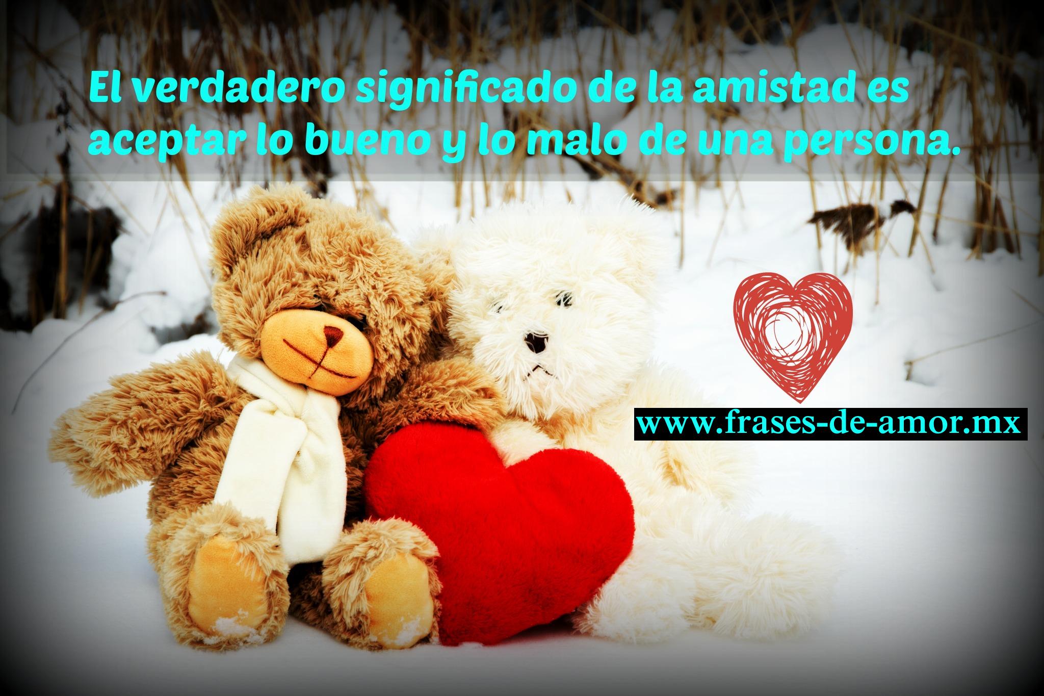 El verdadero significado de la amistad es aceptar lo bueno y lo malo de una persona